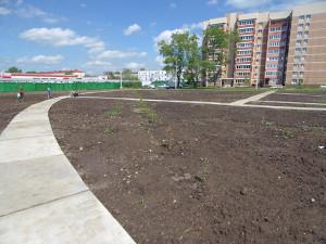 Строительство сквера июнь 2017 - 1