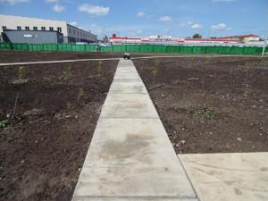 Строительство сквера июнь 2017 - 8